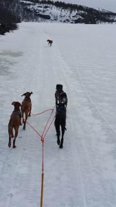 Snøekjøring20160423_113300